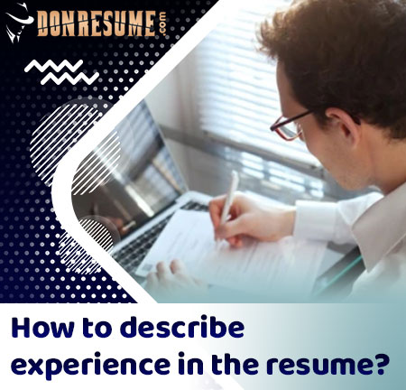 professional experience in the resume